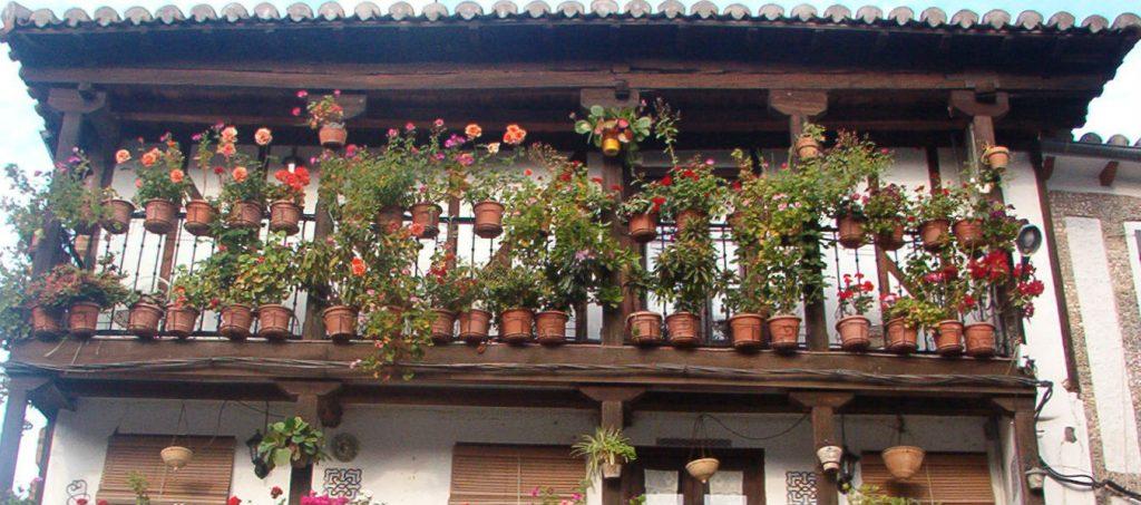 casa_flores